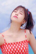 Dance The Night Away Naver Mina