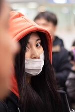 Incheon International Airport Arrival 181103 Tzuyu
