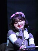 Yes Or Yes Sinchon Fansign Jihyo 8