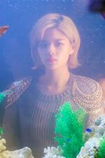 What Is Love BTS Jeongyeon 2