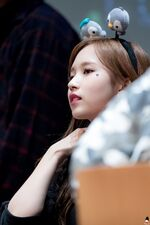 Yes Or Yes Sangnam Fansign Mina