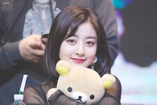 Yes Or Yes Yeouido Fansign Jihyo 19