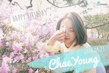Birthday Chaeyoung 2016