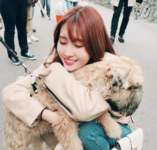 Momo with a dog Ig Update