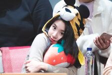 Yes Or Yes Sangnam Fansign Chaeyoung 15