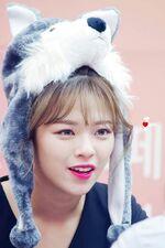 Dance The Night Away Hanam Fansign Jeongyeon 3