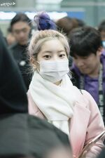 Incheon International Airport Arrival 181103 Dahyun 11