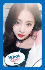 What Is Love Tzuyu Photocard