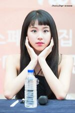 Dance The Night Away Hanam Fansign Chaeyoung