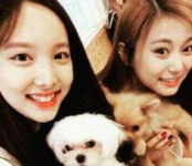 Nayeon and Tzuyu with dogs 2