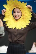 Yes Or Yes Sangnam Sinchon Nayeon 5