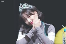 Yes Or Yes Sinchon Fansign Jihyo 2
