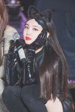 ONCE Halloween Fanmeeting Nayeon 12
