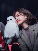 Yes Or Yes Sinchon Fansign Jihyo 12