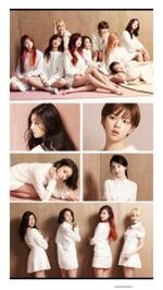 High Cut Innisfree Twice