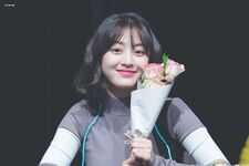 Yes Or Yes Sinchon Fansign Jihyo
