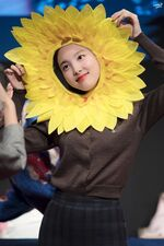 Yes Or Yes Sangnam Sinchon Nayeon 3