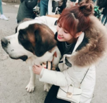 Momo with a dog Ig Update 2