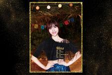 Dance The Night Away Mina Profile