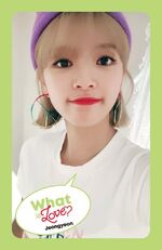 What Is Love Jeongyeon Photocard