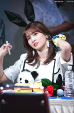 Momo fan meet 170521
