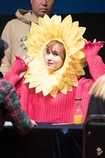 Yes Or Yes Sinchon Fansign Mina 10