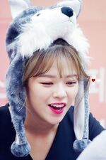Dance The Night Away Hanam Fansign Jeongyeon 4
