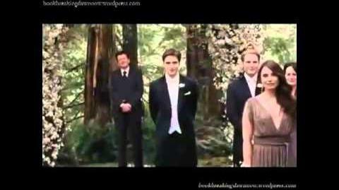 Breaking Dawn trailer in reverse.its funny