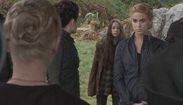 Bree et les Cullen