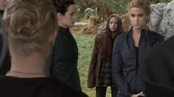 The Cullens olympic coven | twilight saga wiki | fandom poweredwikia
