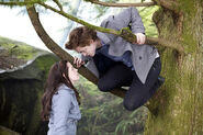 Twilight15