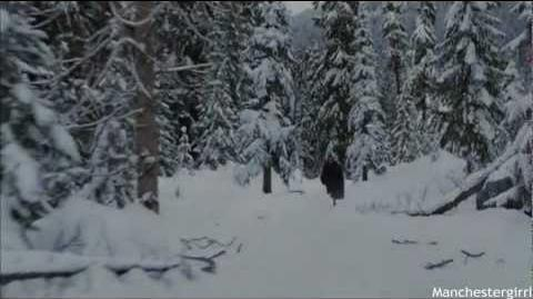 Breaking Dawn; Part Two - Battle Scene.-0
