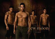 NewMoonQuileuteWerewolvesX(1)