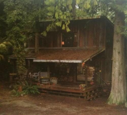 Emily\u0027s house. & Character homes | Twilight Saga Wiki | FANDOM powered by Wikia