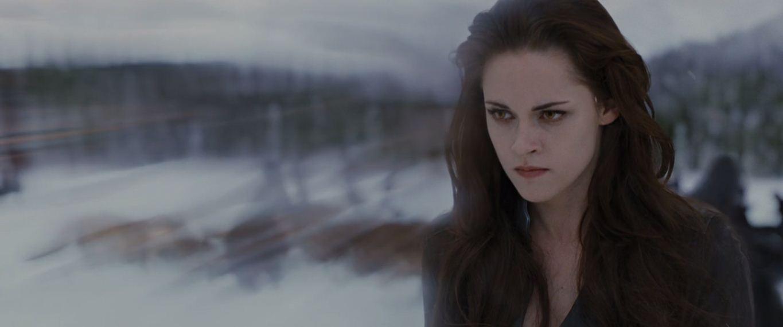 Bella using her shield.JPG