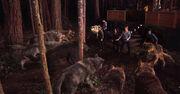 Breaking dawn twilight saga part 1 wolf pack vs cullen family final battle