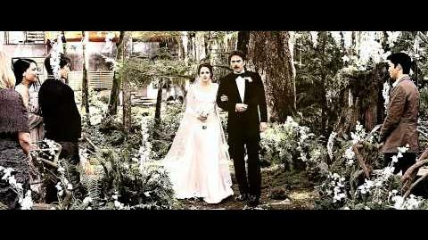 Edward & Bella - A Love Everlasting