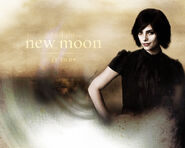 Alice-new-moon-7355070-1280-1024