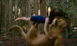 OMG! Now Bella love blood