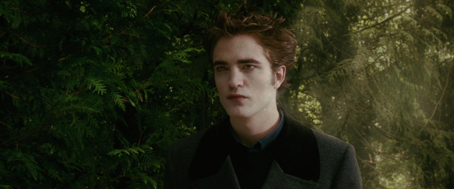 Twilight New Moon Pictures Of Edward And Bella