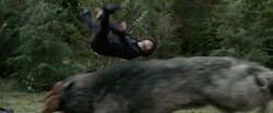 Alice jump5