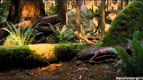 Breaking Dawn; Part Two - Bella's First Hunt.