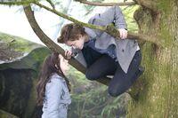 Edward & Bella forêt