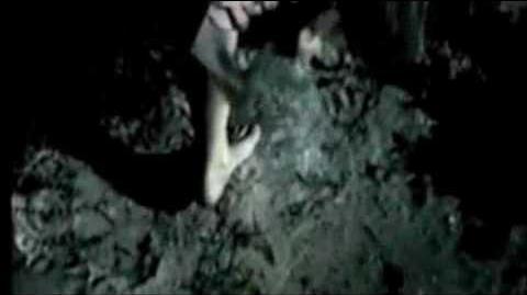 New Moon Trailer - 2009 Summit Entertainment - The Twilight Saga