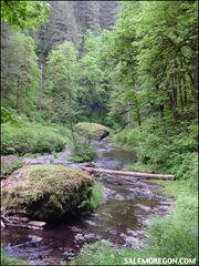 Filming locations | Twilight Saga Wiki | FANDOM powered by Wikia