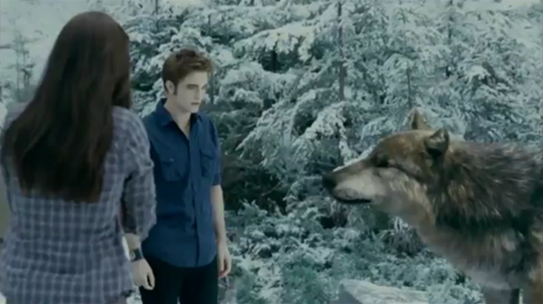 Seth Clearwater | Twilight Saga Wiki | FANDOM powered by Wikia Twilight Wolf Pack Seth