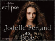 Jodelle-bree-graphic