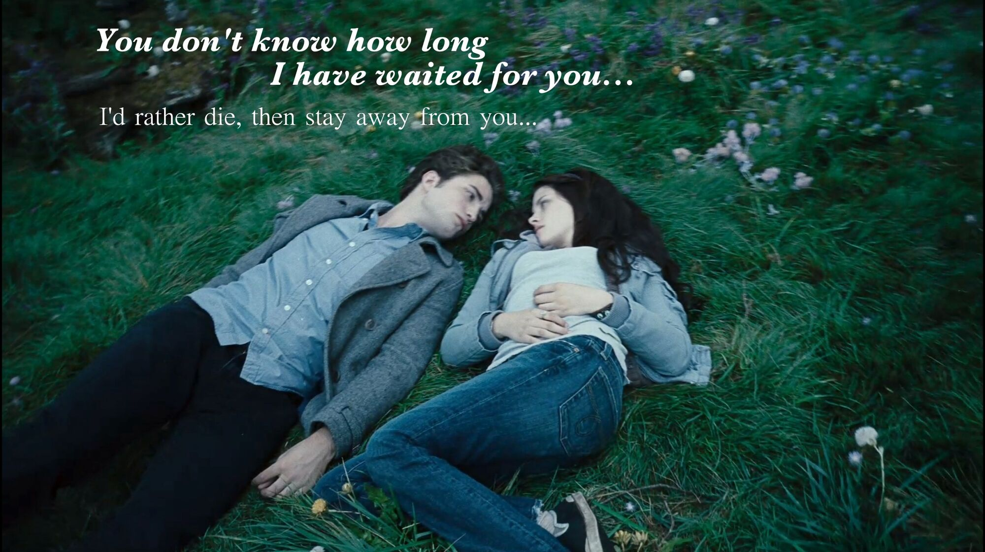 Image result for twilight i love you bella