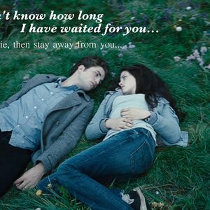Twilight movie quotes | Twilight Saga Wiki | Fandom