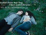 Twilight movie quotes